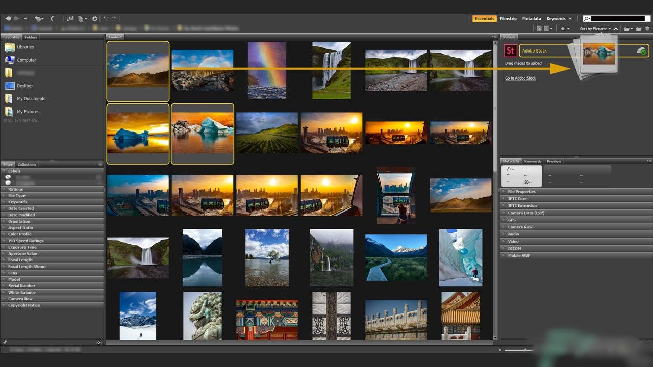 Adobe Bridge CC 2020 10.0.4.157 RePack + MacOS