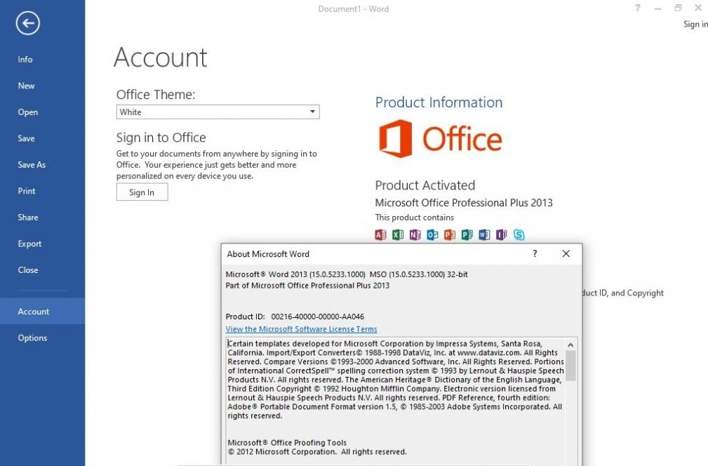 Microsoft Office 2013 Professional Plus ISO Free Download Service Pack 1